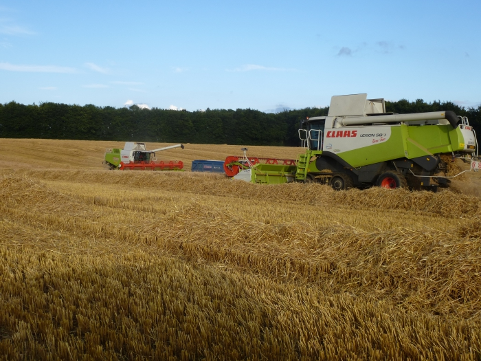 Both combines out at work harvesting winter barley!