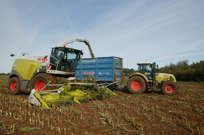 The CLASS JAGUAR 960 fitted with a 10 row maize header