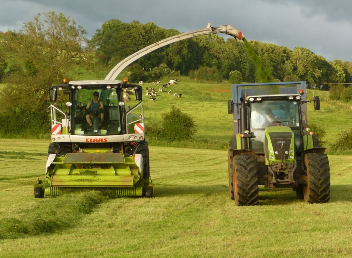 Silage 2012